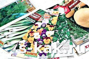Фото - Як готувати насіння до весняного посіву