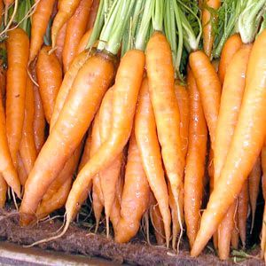 Фото - Як зберігати моркву