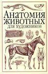 анатомія коні