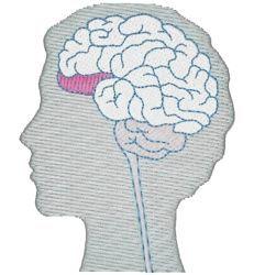 Як обдурити мозок
