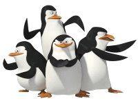 Фото - Чому у пінгвінів не мерзнуть лапи?