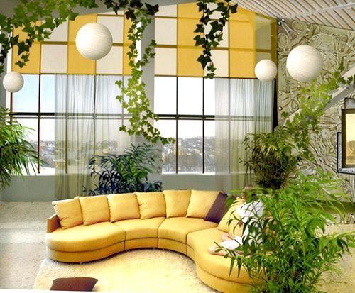 Фото - Рослини зволожуючі повітря